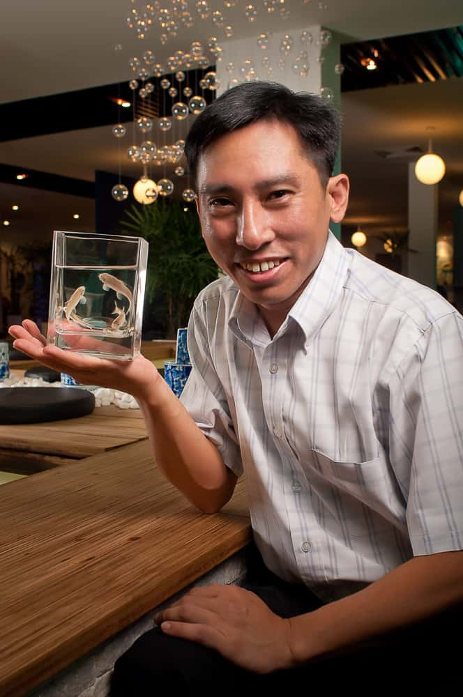 thepufferfish, sin kok wai, Changi Class magazine